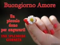 Buongiorno Amore Le Piu Belle Immagini Buongiorno Amore