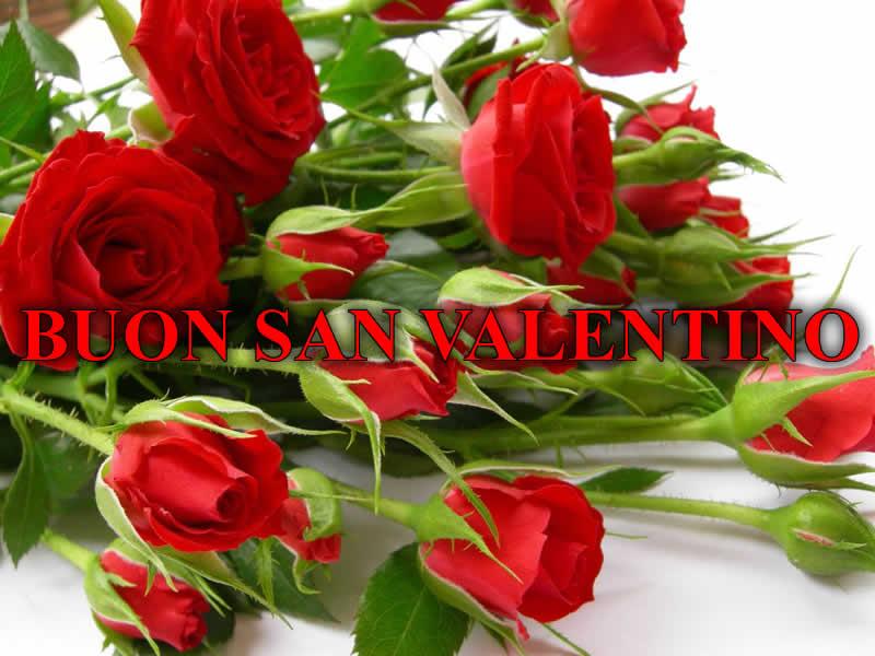 Auguri di buon san valentino immagine auguri di buon san for Pensierini di san valentino